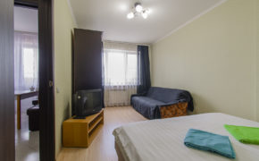 1 комнатная квартира «Королевский размер»